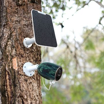 Van babykamer tot vogelhuis - Slimme toepassingen voor een IP camera