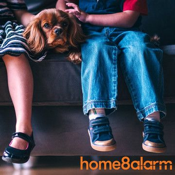Home8 & je huisdier